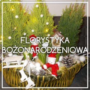 florystyka bożonarodzeniowa pabianice